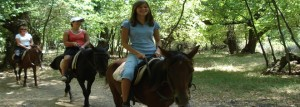 Horse-Safari_Marmaris_3