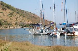 Sailing_Rental_8